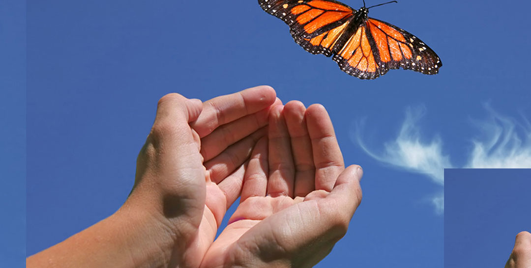Meditations to Help Release Negative Beliefs