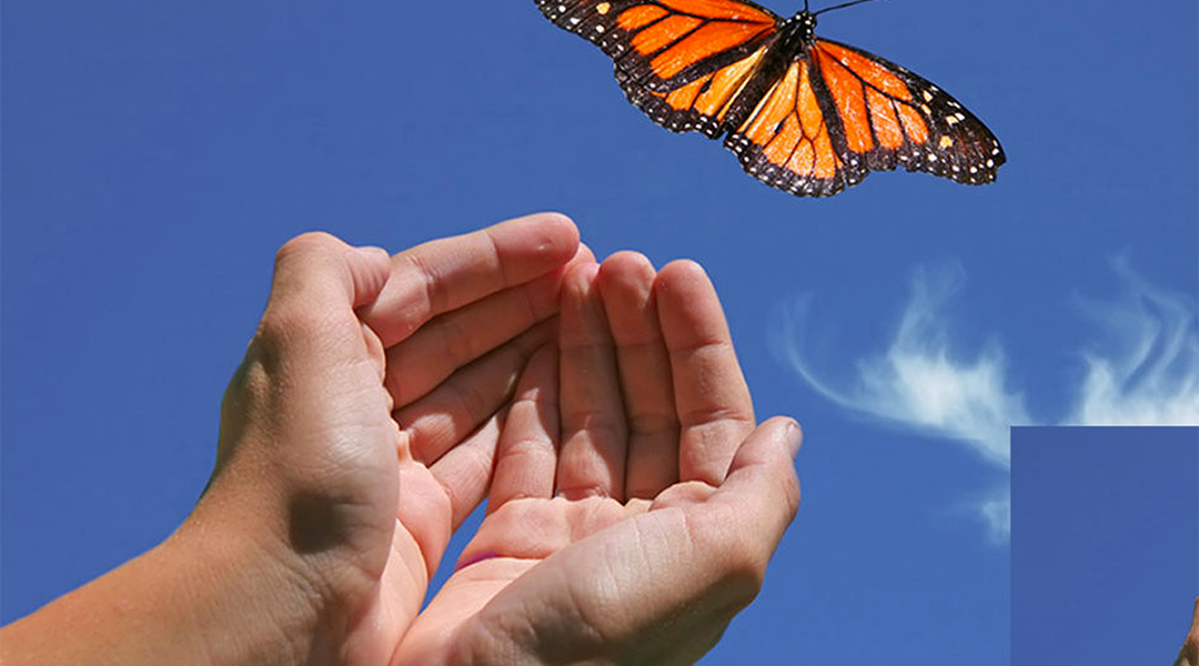 Releasing Negative Beliefs Meditation – 10 Minutes